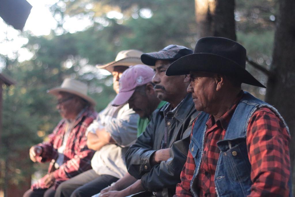 Resultados de la Misión Civil de Observación: Autonomía Purépecha, violencia y criminalización.