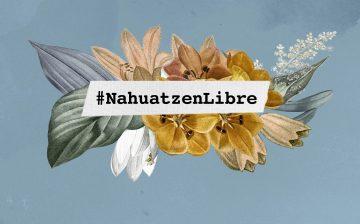 Acción Urgente OMCT- FIDH BRUSELAS: Amenazas e intimidación contra el Consejo Ciudadano Indígena de Nahuatzen